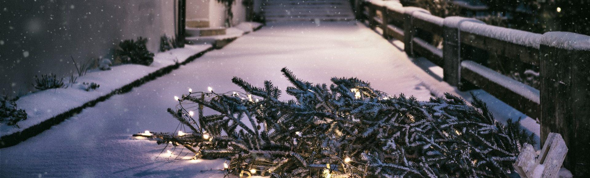 Die Weihnachtszeit.